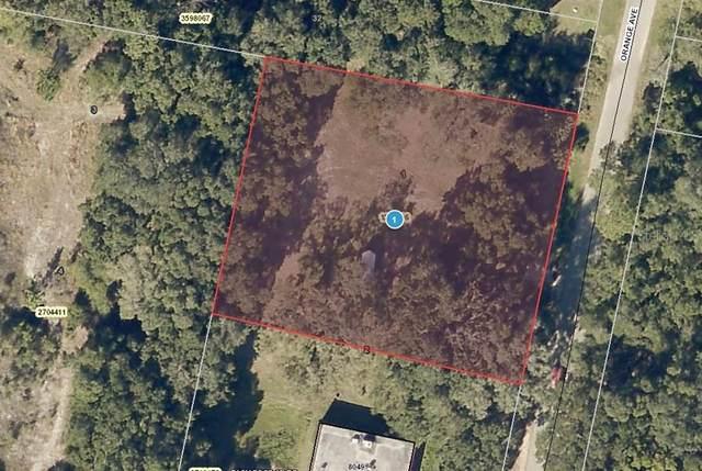 21700 Orange Avenue, Yalaha, FL 34797 (MLS #A4502670) :: The Hustle and Heart Group