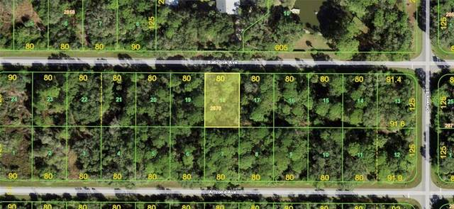 13085 Babcock Avenue, Port Charlotte, FL 33953 (MLS #A4502742) :: The Hustle and Heart Group