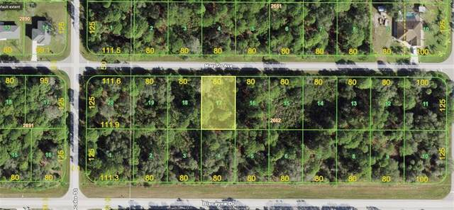 14023 Mary Jo Avenue, Port Charlotte, FL 33953 (MLS #A4502748) :: Your Florida House Team