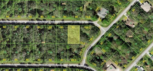 14151 Carrie Avenue, Port Charlotte, FL 33953 (MLS #A4502749) :: RE/MAX Marketing Specialists