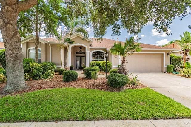 10604 Old Grove Circle, Bradenton, FL 34212 (MLS #A4503015) :: Everlane Realty