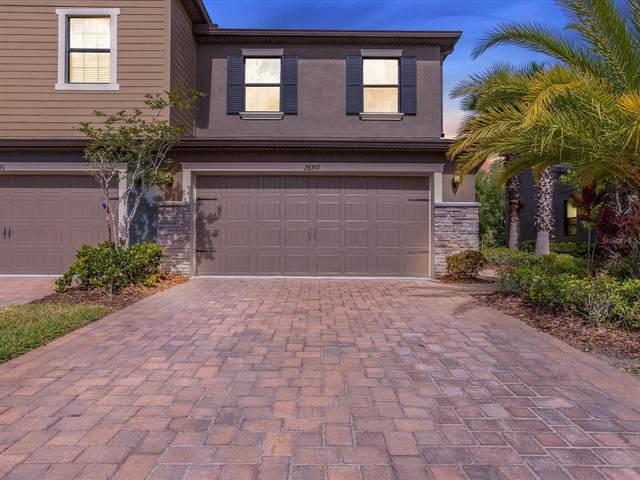 28397 Pleasant Bay Loop, Wesley Chapel, FL 33543 (MLS #A4503198) :: Everlane Realty