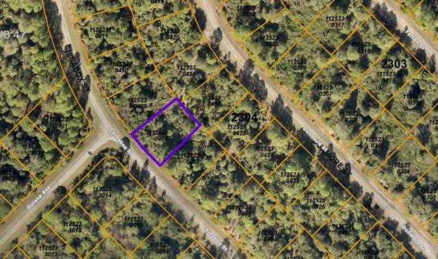 1125230408 Chinabox Street, North Port, FL 34288 (MLS #A4503255) :: The Hustle and Heart Group