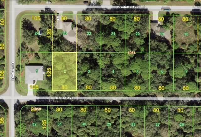 18100 Goliad Avenue, Port Charlotte, FL 33954 (MLS #A4503378) :: Frankenstein Home Team