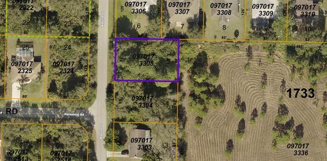 Wasilla Street, North Port, FL 34291 (MLS #A4503484) :: The Hustle and Heart Group