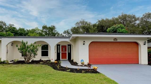 1117 Montezuma Drive, Bradenton, FL 34209 (MLS #A4503496) :: MavRealty