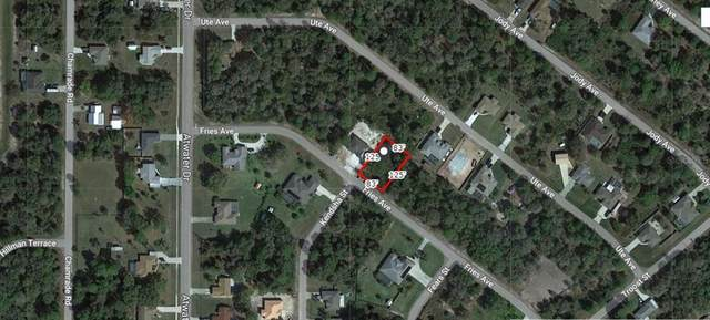 Fries Avenue, North Port, FL 34288 (MLS #A4503536) :: The Price Group