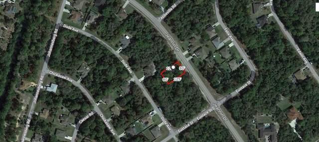 Jeannin Drive, North Port, FL 34288 (MLS #A4503540) :: Team Pepka