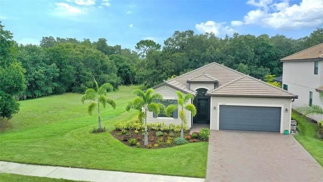 11205 Copperlefe Drive, Bradenton, FL 34212 (MLS #A4503541) :: CGY Realty