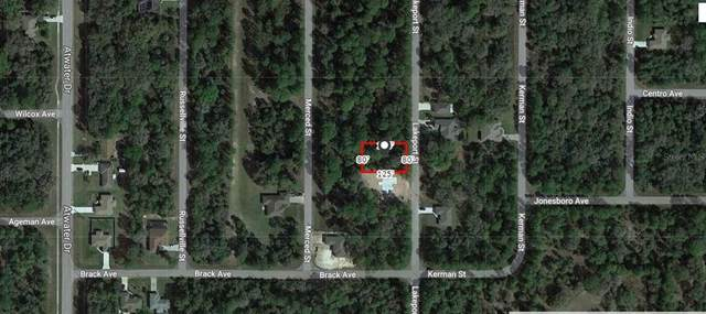 Lakeport Street, North Port, FL 34288 (MLS #A4503544) :: The Price Group