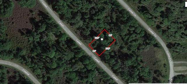Cadell Street, North Port, FL 34288 (MLS #A4503586) :: Griffin Group