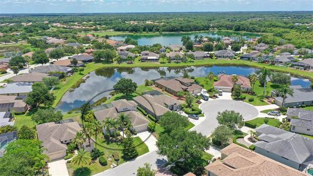 315 Salvia Court, Bradenton, FL 34212 (MLS #A4503623) :: Everlane Realty