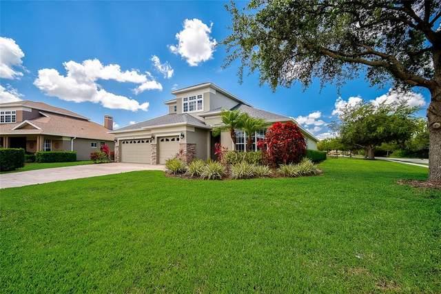 341 Snapdragon Loop, Bradenton, FL 34212 (MLS #A4503782) :: Everlane Realty