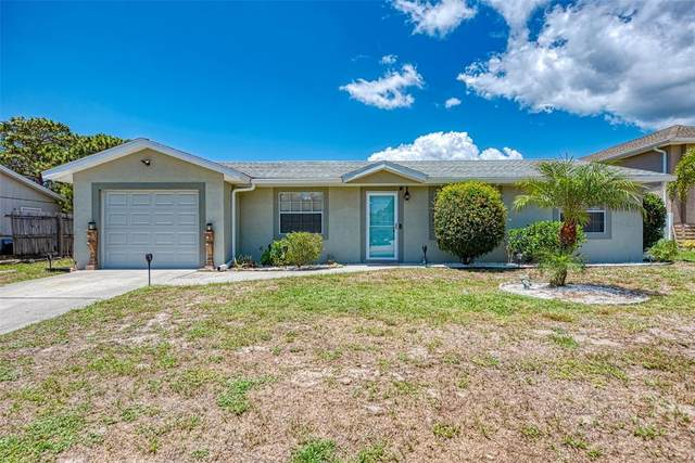 10146 Stonecrop Avenue, Englewood, FL 34224 (MLS #A4503813) :: The Hustle and Heart Group