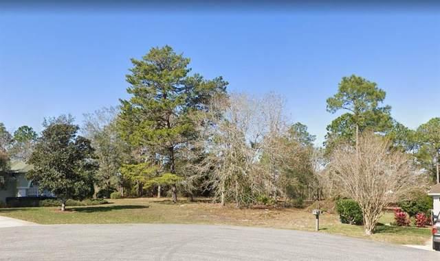 17365 Sierra Place, Weeki Wachee, FL 34614 (MLS #A4503843) :: McConnell and Associates