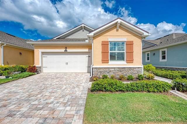 5103 Flag Street, Sarasota, FL 34232 (MLS #A4503852) :: Godwin Realty Group