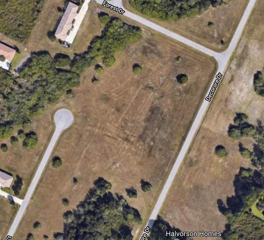13 Decorore Drive, Rotonda West, FL 33947 (MLS #A4503960) :: Cartwright Realty