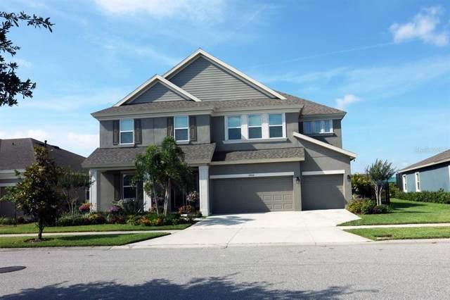 6406 Tideline Drive, Apollo Beach, FL 33572 (MLS #A4503962) :: Zarghami Group