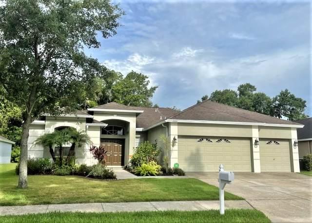 4004 34TH Street E, Bradenton, FL 34208 (MLS #A4504085) :: Everlane Realty