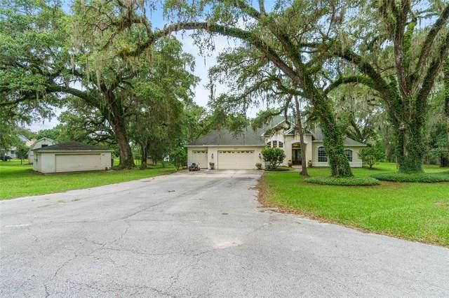 Brooksville, FL 34601 :: Zarghami Group
