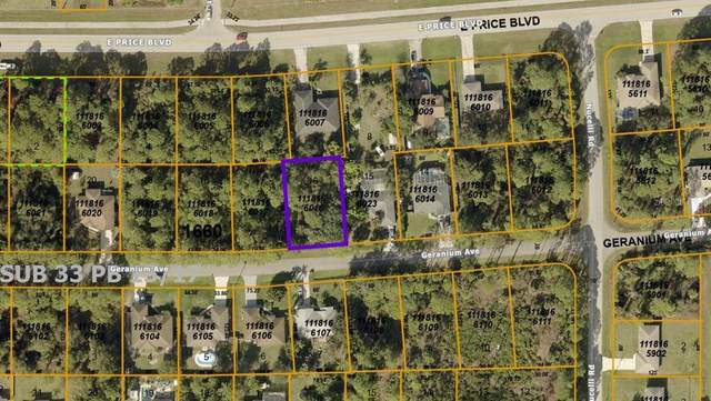 Geranium Avenue, North Port, FL 34288 (MLS #A4504203) :: Armel Real Estate