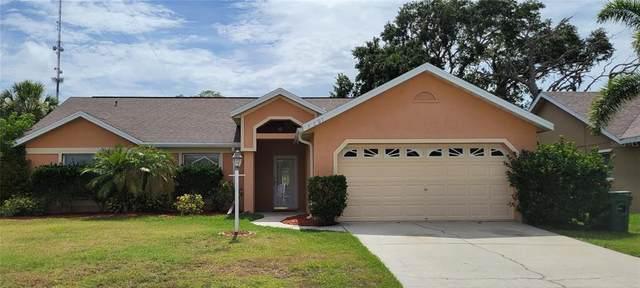 3607 6TH Avenue W, Palmetto, FL 34221 (MLS #A4504220) :: The Robertson Real Estate Group