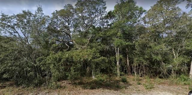 18385 Rigsby Road, Shady Hills, FL 34610 (MLS #A4504305) :: Lockhart & Walseth Team, Realtors