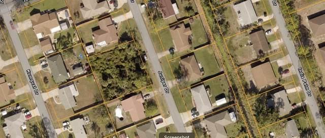 3014 Juniper Drive, Edgewater, FL 32141 (MLS #A4504314) :: Wolves Realty