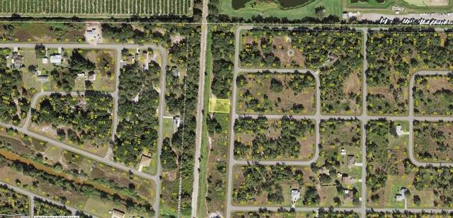 53 Sunflower Street, Punta Gorda, FL 33982 (MLS #A4504333) :: Frankenstein Home Team