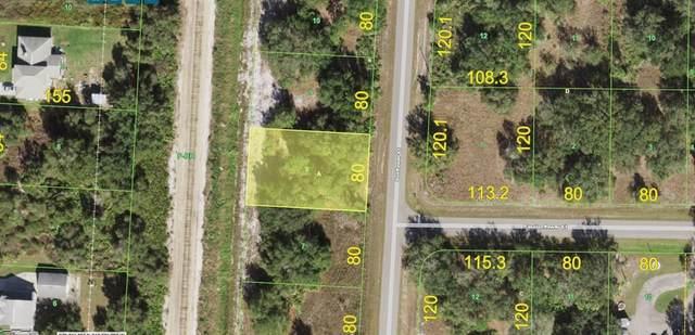 199 Sunflower Street, Punta Gorda, FL 33982 (MLS #A4504334) :: Frankenstein Home Team