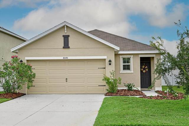 4045 Lindever Lane, Palmetto, FL 34221 (MLS #A4504356) :: The Robertson Real Estate Group