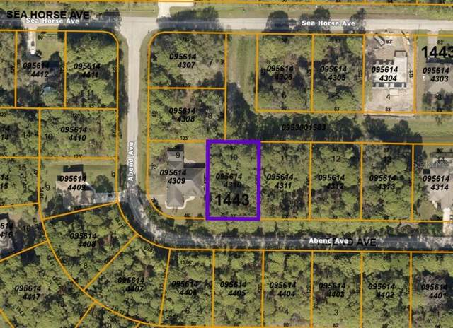 Abend Avenue, North Port, FL 34286 (MLS #A4504383) :: Expert Advisors Group
