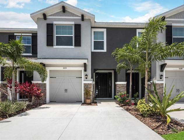 8653 Daydream Street, Sarasota, FL 34238 (MLS #A4504454) :: Your Florida House Team