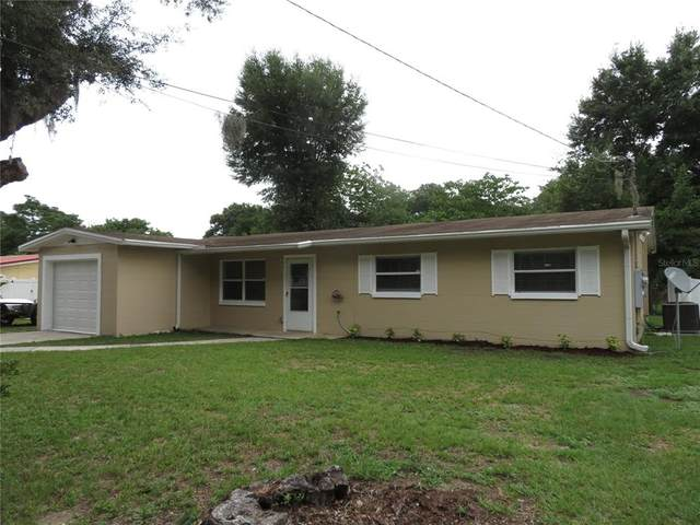 907 N Parsons Avenue, Seffner, FL 33584 (MLS #A4504467) :: Realty Executives