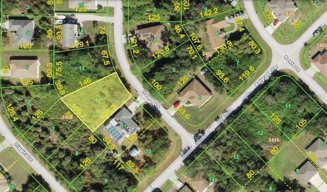 6085 Hooper Lane, Englewood, FL 34224 (MLS #A4504606) :: The Kardosh Team