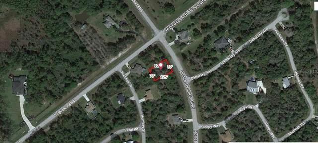 Ponce De Leon Boulevard, North Port, FL 34291 (MLS #A4504690) :: Griffin Group