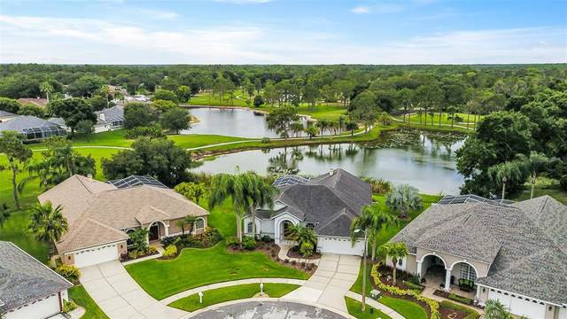 18901 Fairwood Court, Tampa, FL 33647 (MLS #A4504772) :: Keller Williams Realty Peace River Partners