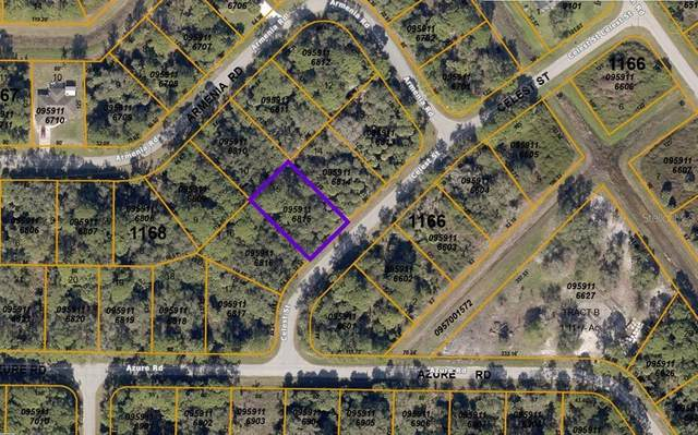 Celest Street, North Port, FL 34286 (MLS #A4504905) :: Alpha Equity Team