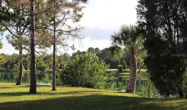 3503 Bluefish Drive, Hernando Beach, FL 34607 (MLS #A4504980) :: Zarghami Group