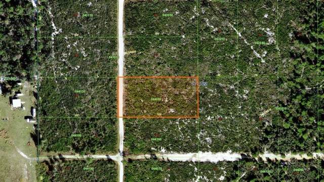 Woodstork Way, Frostproof, FL 33843 (MLS #A4505082) :: EXIT Realty Positive Edge