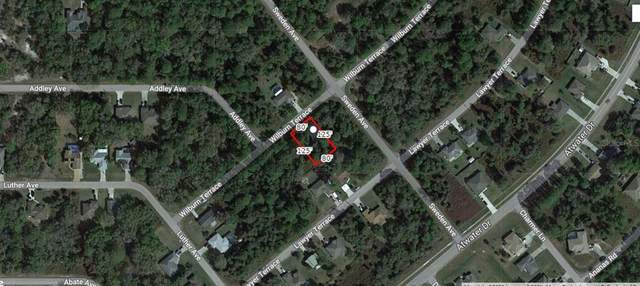Wilburn Terrace, North Port, FL 34288 (MLS #A4505301) :: The Paxton Group
