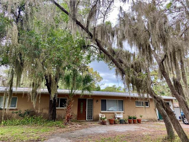 6534 Goldfinch Street, Sarasota, FL 34241 (MLS #A4505302) :: Zarghami Group