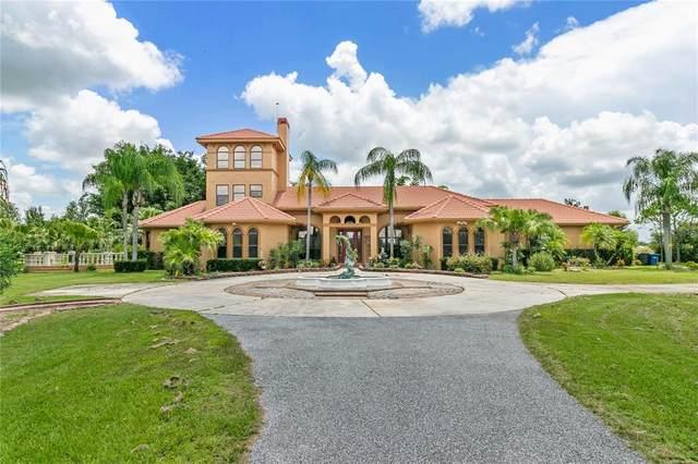 2077 Verna Road, Myakka City, FL 34251 (MLS #A4505600) :: Delgado Home Team at Keller Williams