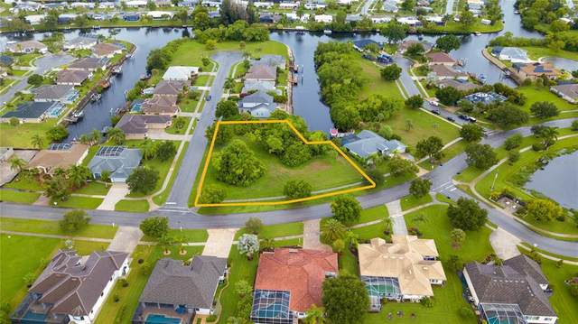 Lamar Court, North Port, FL 34287 (MLS #A4505705) :: The Paxton Group