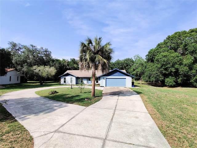 11031 10TH Avenue E, Bradenton, FL 34212 (MLS #A4505967) :: Medway Realty