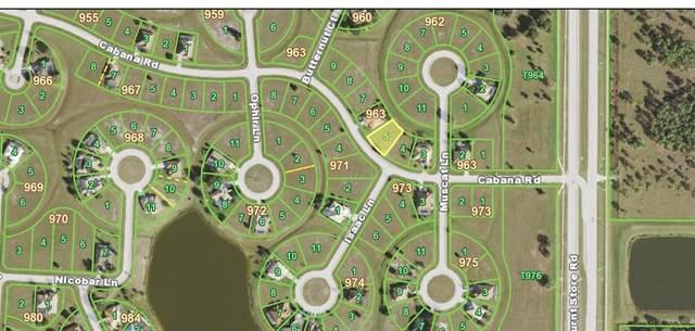 24480 Cabana Road, Punta Gorda, FL 33955 (MLS #A4505992) :: Everlane Realty