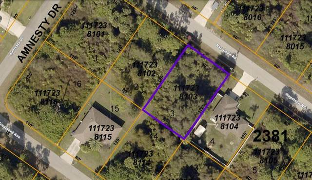 1117238103 Napoleon Road, North Port, FL 34288 (MLS #A4506000) :: Baird Realty Group