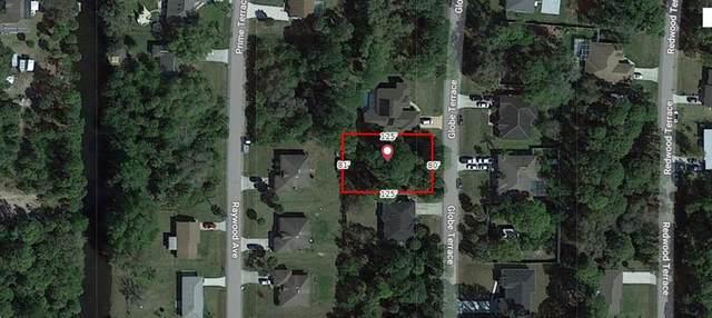 Globe Terrace, North Port, FL 34286 (MLS #A4506079) :: Everlane Realty