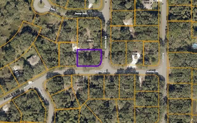 Goshen Road, North Port, FL 34288 (MLS #A4506109) :: Zarghami Group