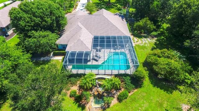 1230 Palm View Road, Sarasota, FL 34240 (MLS #A4506113) :: Zarghami Group